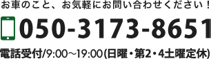 050-3173-8651